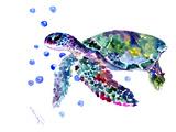 Sea Turtle 3 Kunst af Suren Nersisyan