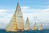 Sailboats Competing in the 12-Metre Class Championship, Newport, Rhode Island, USA Fotografisk trykk