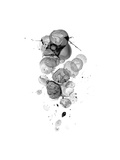 Interstellar Abstract B Premium Giclee Print by  THE Studio