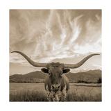Longhorn Premium Giclee Print by  THE Studio