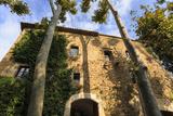 Gala Dali Castle Museum facade amidst tall trees, medieval home of Salvador Dali, Pubol, Baix Empor Photographic Print by Eleanor Scriven