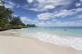 Miami Beach, Oistins, Christ Church, Barbados, West Indies, Caribbean, Central America Fotografisk trykk av Frank Fell