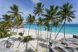 Bottom Bay, St. Philip, Barbados, West Indies, Caribbean, Central America Fotografisk trykk av Frank Fell