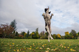 Springer Spaniel leaping for treat, United Kingdom, Europe Fotoprint van John Alexander
