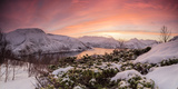 Panorama of frozen sea surrounded by snow framed by the orange sky at sunset, Torsken, Senja, Troms Photographic Print by Roberto Moiola