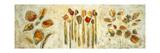 Botanical Trio Prints by Lisa Ridgers