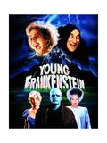 Young Frankenstein, Gene Wilder, Marty Feldman, Teri Garr, Peter Boyle, Madeline Kahn, 1974 Premium Giclee-trykk