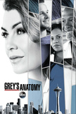 Greys Anatomy Print