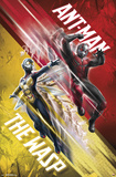 Ant-Man and the Wasp - Duo Prints