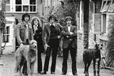The Who, with Dogs Foto von  Associated Newspapers