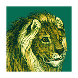 Jungle Flair III Posters par  Wild Apple Portfolio
