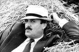 John Cleese Lounging in Hay Foto von  Associated Newspapers