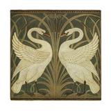 Swan Design Impressão giclée por Walter Crane