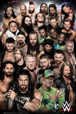 WWE (World Wrestling Entertainment) Poster