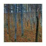 Beech Grove I Pósters por Gustav Klimt