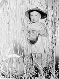 Child in Halloween Costume Foto