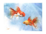 Goldfish Prints by Eric Sweet