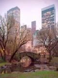 Central Park, NYC Fotografisk trykk av Alan Klug