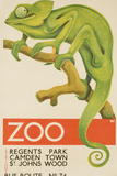Zoo, Iguana London Bus Route No. 74 Advertising Poster Fotografie-Druck von David Pollack