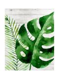 Banana Leaf I Pôsters por Tamara Robinson