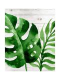 Banana Leaf III Pôsteres por Tamara Robinson