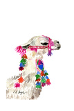 Little Llama Poster von Elise Engh