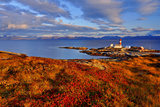 Europe, Norway, Nordnorwegen Impressão fotográfica por Bernd Rommelt