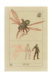 Ant-Man and the Wasp - Ant-Man Scientific Illustration Posters