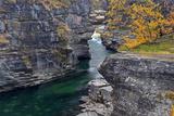Europe, Sweden, Province Autumn at the Abisko Canyon Impressão fotográfica por Bernd Rommelt