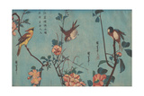 Titmouse and Camellias, Sparrow and Wild Roses and Black-naped Oriole and Cherry Blossoms, c.1833 Giclée-tryk af Ando or Utagawa Hiroshige