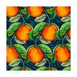 Andalucian Oranges, 2017 Reproduction procédé giclée par Andrew Watson