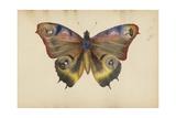 The Madame B Album, 1870s Giclée-tryk af Marie-Blanche-Hennelle Fournier