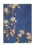 Bullfinch and weeping cherry-tree, pub. c.1834 Giclée-tryk af Katsushika Hokusai