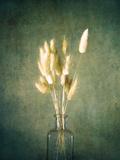 Farmhouse Bouquet Lámina por Annie Bailey