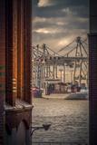 Germany, Hamburg, Elbe, Harbor, St. Pauli, Fish Market, Great Place, Container Terminal Reproduction photographique par Ingo Boelter