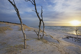 Sunset on the Western Beach of Darss Peninsula Photographic Print by Uwe Steffens