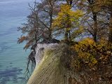 Germany, Ruegen Jasmund National Park, Autumn Beeches on the Steep Bank Hanging over the Baltic Sea Photographic Print by K. Schlierbach