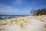 Dunes on the Western Beach of Darss Peninsula, Photographic Print by Uwe Steffens