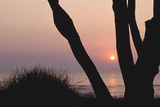 Sunset in Front of the Western Beach of Darss Photographic Print by Uwe Steffens