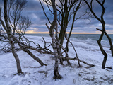 Germany, Western Pomerania Bodden Area National Park, Darss, Winter Mood at the West Beach of Darss Photographic Print by K. Schlierbach