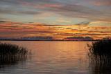 Red Sky over the Saaler Bodden Close Ahrenshoop Photographic Print by Uwe Steffens