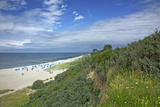 Beach of the Baltic Sea Close Ahrenshoop, View from the Steep Bank to the Western Beach of Darss Photographic Print by Uwe Steffens