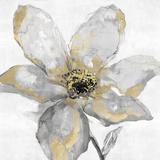 Petals and Gold Reproduction procédé giclée par Tania Bello