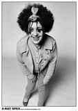 Poly Styrene / X-Ray Spex Pósters