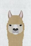 Alpaca Láminas por  Annie Bailey Art