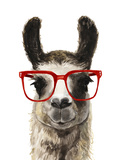 Hip Llama I Premium Giclee Print by Victoria Borges