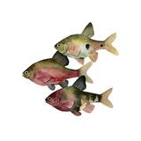 Rainbow Fish I Prints by Emma Scarvey