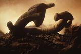 Alien, 1979 directed by Ridley Scott (photo) Foto