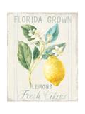 Floursack Lemon I Kunstdrucke von Danhui Nai