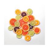Sunny Citrus I Crop Premium-giclée-vedos tekijänä Felicity Bradley